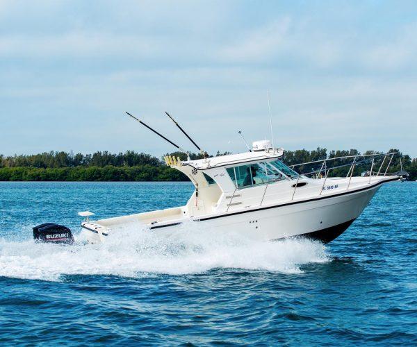 Cortez-Deep-Sea-Fishing