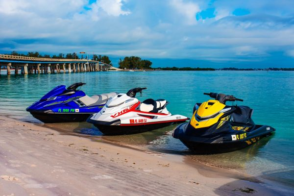 jet-ski-wildlife-tours-longboat-key