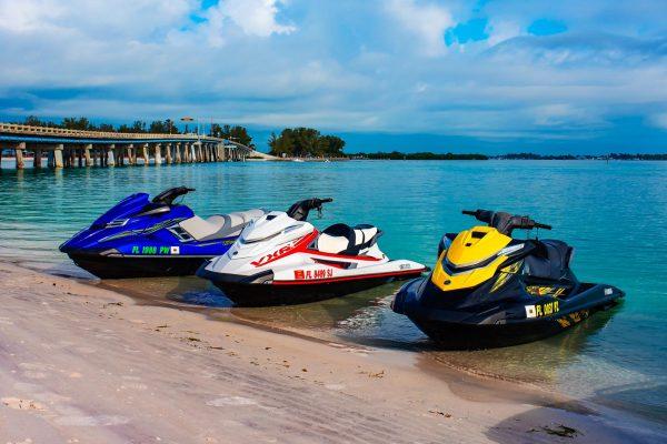 jet-ski-wildlife-tours-longboat-key